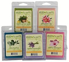 EcoScents 100% All Natural Soy Wax Melts - 'Floral Pack' ** Check out this great product. (This is an affiliate link and I receive a commission for the sales)