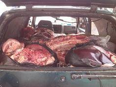 Noticias de Cúcuta: Decomisados dos cargamentos de carne bovina y moto...