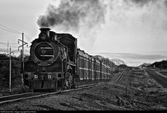 RailPictures.Net Photo: 806 BCL (Bamangwato Concessionaires Limited) Steam 4-8-2 at Selebi Phikwe, Botswana by Paul Perton:
