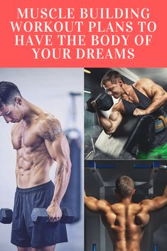 Muscle Building Workout Plans To Have The Body OF Your Dreams - norah Muscle Building Workout Plan, At Home Workout Plan, Workout Plans, Muscle Fitness, Gain Muscle, Build Muscle, Shoulder Muscles, Back Muscles, Barbell Shoulder Press