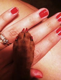 My nails and my dogs nails did :)