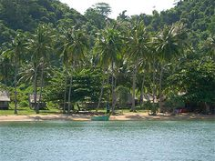 Koh Tonsay, l'île aux lapins