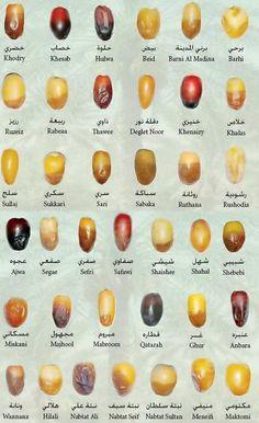Types of dates.