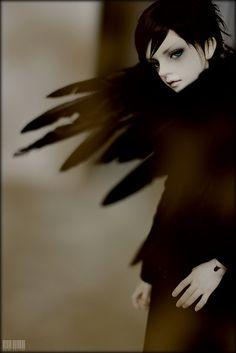 黑天使 | Flickr: partage de photos!