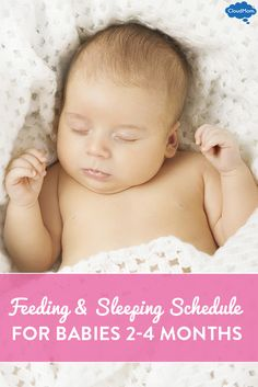 Feeding and eating schedule idea.. Eat, play, sleep REPEAT... And don't let it go longer than 3 hours during the day!