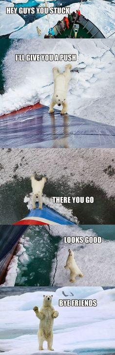 Good guy polar bear.