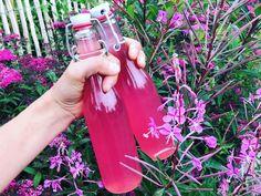 Saft på den vackra rallarrosen, eller mjölkört/mjölke som den också kallas.