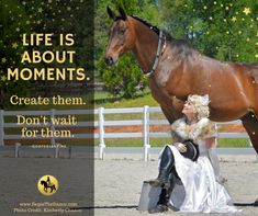 This year take action and  learn trick training, dressage, bitless, bridleless, and more! click here