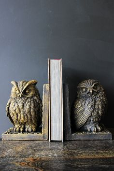 Home Interior Cuadros Owl Bookends.Home Interior Cuadros Owl Bookends Easy Home Decor, Cheap Home Decor, Home Decor Accessories, Decorative Accessories, Cheap Office Decor, Rockett St George, Beautiful Owl, Victorian Decor, Home Decor Pictures