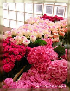 ♥ FLOWERS FOR YOU♥