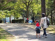 2014/3/12/ 保育園:お別れ遠足で稲美中央公園へ。