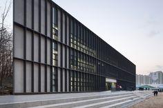 Школа DH Triangle в Южной Корее — HQROOM