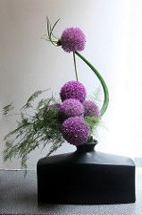 """I attended a Hayaike Ikebana workshop today - Hayaike means """"quick arranging"""". We did each arrangement in 20 minutes, then went around for a critique of our work. We each did a large, medium and small arrangement. Ikebana Arrangements, Creative Flower Arrangements, Ikebana Flower Arrangement, Flower Vases, Floral Arrangements, Cactus Flower, Ranunculus Flowers, Bouquet Flowers, Arte Floral"""