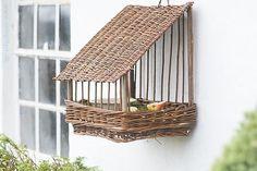 ...garden bird feeder