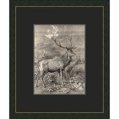 Melissa Van Hise Forest Dwellers lll Framed Graphic Art