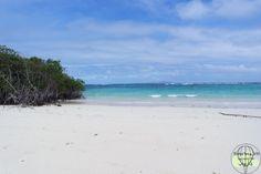 Galapagos Inseln – Die besten Tipps für eine günstige und unvergessliche Reise