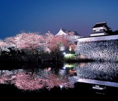 9 Cities You Have to Visit in Japan (9)