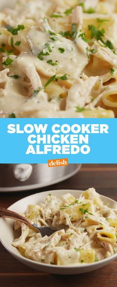 Chicken Alfredo Slow-Cooker Chicken Alfredo is the only way to warm up this fall.Slow-Cooker Chicken Alfredo is the only way to warm up this fall. Slow Cooker Huhn, Crock Pot Slow Cooker, Slow Cooker Chicken, Slow Cooker Recipes, Crockpot Recipes, Chicken Recipes, Crock Pots, Crockpot Dishes, Roast Recipes