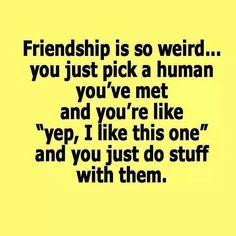 Friendship is so weird..