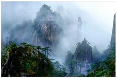 (garden of the gods) Mt. Sanqingshan National Park, China