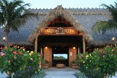 Photos of Tarpon Creek Bar & Grill, Marathon - Restaurant Images - TripAdvisor Miss Florida, Key West Florida, Florida Girl, Florida Vacation, Florida Travel, Vacation Places, Travel Usa, Vacation Food, Marathon Florida Keys