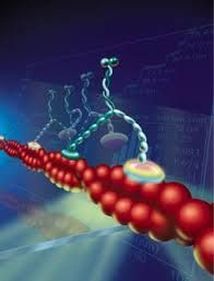 cool molecule - Google Search