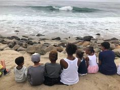 Multi family children watching the seals in La Jolla, CA