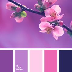Bright and delicate at the same time, colors of this palette are eye-catching. Contrasting violet and pale pink suit delicate and sensitive woman. Palette can be diluted with purple, aubergine and violet. Color Schemes Colour Palettes, Spring Color Palette, Colour Pallette, Color Palate, Spring Colors, Color Combos, Purple Palette, Spring Flowers, Design Seeds