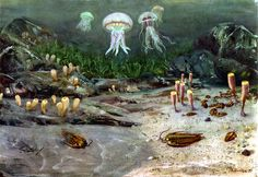the_cambrian_sea_by_zdenek_burian_1951 by it's better than bad, via Flickr