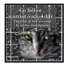 """""""Shout out to warrior-cats-4-life"""" by samaras-life ❤ liked on Polyvore featuring art"""