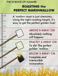 Roasting the Perfect Marshmallow