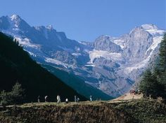 parco nazionale gran paradiso italy - Google Search