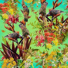 Garden Kaka III (55cm) Limited Edition Prints, Bird Feeders, New Zealand, Watercolor Paintings, Digital Prints, Cool Art, Fine Art Prints, Flora, Vibrant