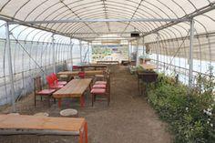 バーベキュー(半バリアフリー)|おかべ農園|埼玉県深谷市農業体験施設