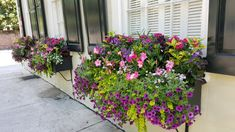 best summer flowers on balcony – Vyhľadávanie Google Flower Containers, Flower Boxes, Home Office Furniture Design, Hooker Furniture, Window Boxes, Summer Flowers, Charleston, Decor Styles, Living Room Decor