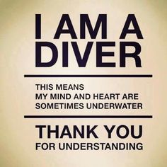 Scuba Diving School – Where to learn How To Dive Scuba Diving Equipment, Scuba Diving Gear, Cave Diving, Scuba Diving Quotes, Diving Logo, Diving School, Be Yourself Quotes, Funny Quotes, 3d Printing