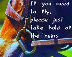 Horse Quote Edits - Smokey Hallow Stables and then let go as I send you flying across a field while I go the other way...