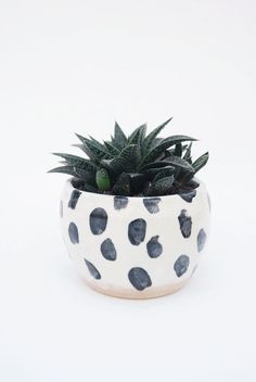black white dots planter