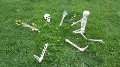 Spring has come and I'm going to be Buried Alive in Dandelions real soon ! Halloween Skeleton Decorations, Halloween Skeletons, Dandelions, Fairies, Fun Stuff, Spring, Faeries, Fun Things, Fairy