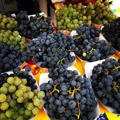 #farmersmarketnyc - Union Square Greenmarket via ktnwtn on Instagram