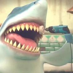 Shark Humor, Shark Jokes, Beautiful Sea Creatures, Animals Beautiful, Shark Gif, Dental Wallpaper, Dental Clinic Logo, Tooth Cartoon, Alone Photography