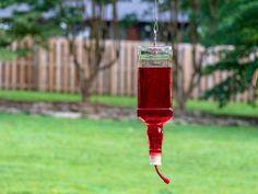 How to Turn a Liquor Bottle Into a Hummingbird Feeder — HGTV Liquor Bottle Crafts, Diy Bottle, Liquor Bottles, Glass Bottles, Pill Bottles, Bottle Art, Homemade Bird Houses, Wine Bottle Centerpieces