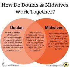 "people ask me all the time ""what's the difference between a doula & midwife?"" well here is a (BRIEF & not fully inclusive) diagram 🤗 · · · Becoming A Midwife, Becoming A Doula, Doula Training, Doula Business, Doula Services, Pregnancy Labor, Pregnancy Pilates, Birth Doula, Childbirth Education"