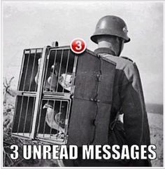 WW1 smartphone - Students could research the role of Pigeons in WW1!