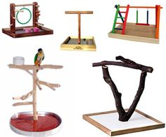 See OVER 100 different tabletop wood bird stands, wood parrot perches and other wooden bird perches made from wood dowels to manzanita at the Perch Factory. Diy Parrot Toys, Diy Bird Toys, Parrot Perch, Bird Perch, Bird Aviary, Cockatiel Toys, Budgies, Cockatiel Care, Bird Play Gym