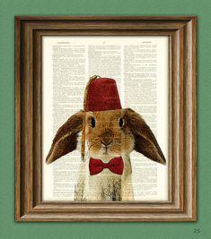 I like bunnies. Bunnies are cool.