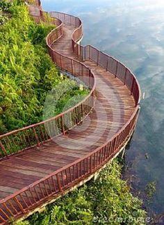 lakeside-nature-walk-way-photograph-showing-beautiful-curving-wooden-board-walkway-tropical-park-natural-style-34127577.jpeg