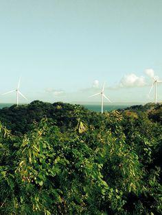 More turbines Puerto Rico