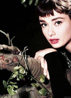 Audrey Hepburn in Sabrina (1954).