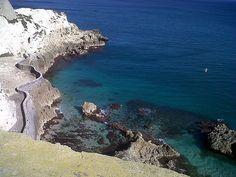 Melilla, un reino marino… ¡con especies fascinantes! Descubre su magia acuática en el Blog de Aquaservice http://blog.viva-aquaservice.com/2013/09/18/melilla-un-reino-marino-con-especies-fascinantes/